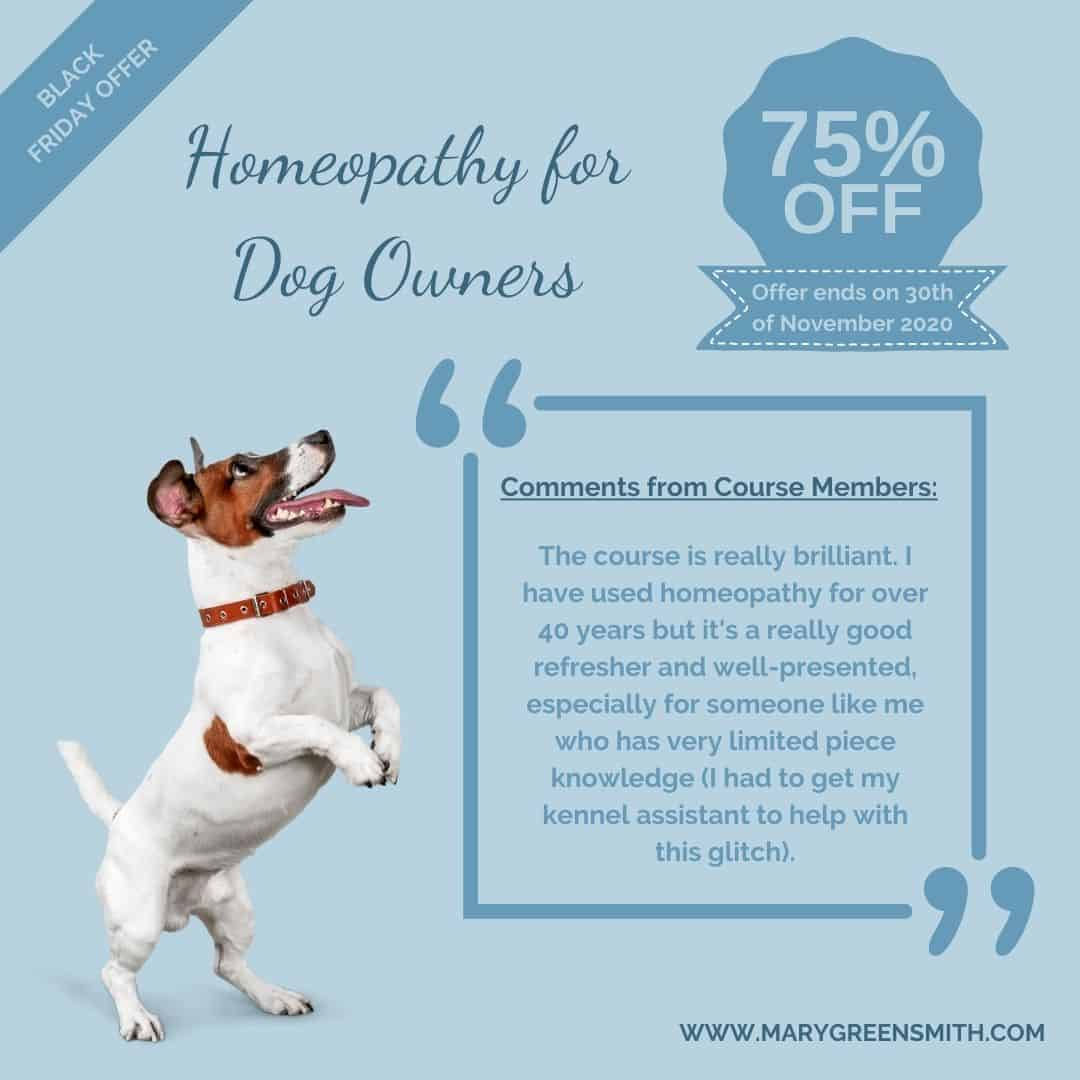 Homeopathy for Cats & Dogs
